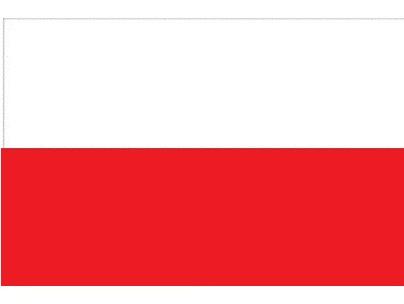Flaga Polski X1